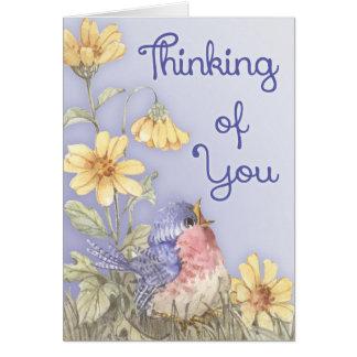 Spring Robin Card