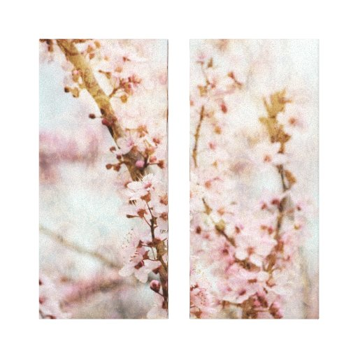 Spring Romance Cherry Blossoms Gallery Wrapped Canvas