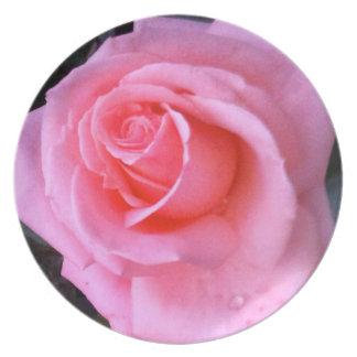 Spring Rose Pink Flower Plate