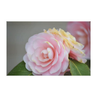 Spring Roses Gallery Wrap Canvas