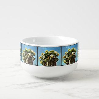 Spring Saguaro Blooms Soup Bowl
