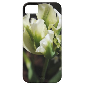 Spring Showers Tulip Garden Botanical Photography Case For The iPhone 5