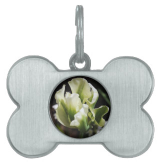 Spring Showers Tulip Garden Botanical Photography Pet Name Tags