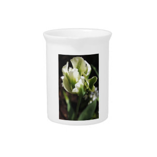 Spring Showers Tulip Garden Botanical Photography Pitchers