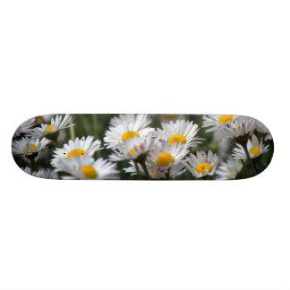 Spring Skate Primavera 19.7 Cm Skateboard Deck