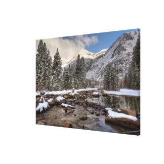 Spring snow, Sierra Nevada, CA Canvas Print