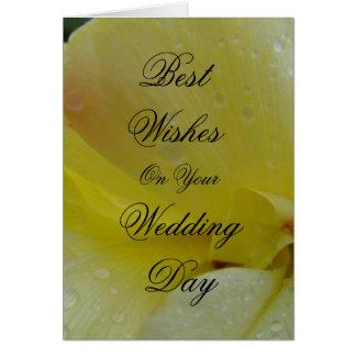 Spring Splash Greeting Card