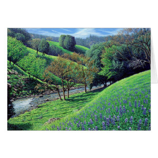 Spring Splendor Cards