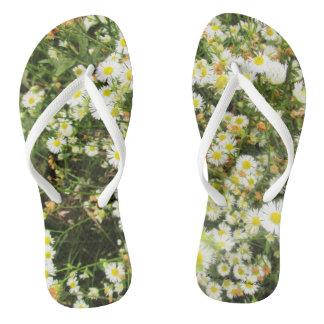 Spring Stroll - Prairie Mile Series Thongs