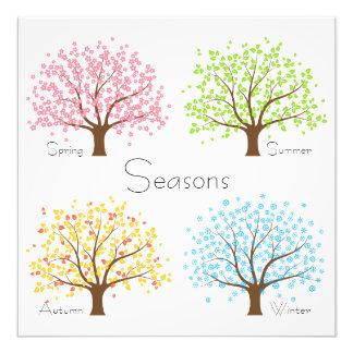Spring Summer Autumn Winter Trees Photographic Print