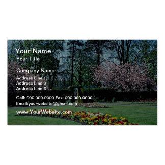 Spring time, Annahill Gardens, Kilmarnock, Scotlan Business Cards