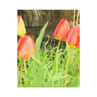 Spring Time Collection 2 Canvas Stretched Canvas Prints