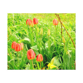 Spring Time Collection 3 Canvas Canvas Prints