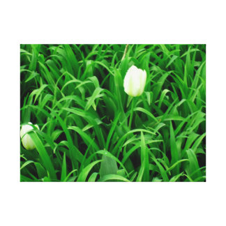 Spring Time Collection 4 Canvas Canvas Print