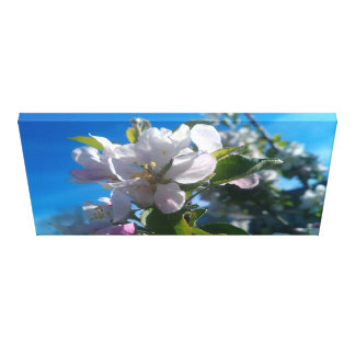 Spring time Flower Gallery Wrapped Canvas