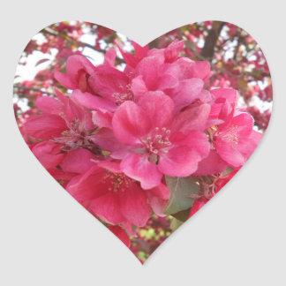 Spring Time Flower Heart Sticker
