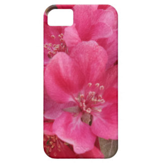 Spring Time Flower iPhone 5/5S, Barely There iPhone 5 Cases