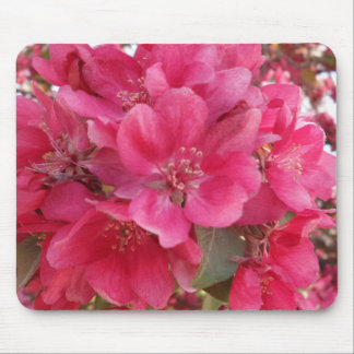 Spring Time Flower Mousepad