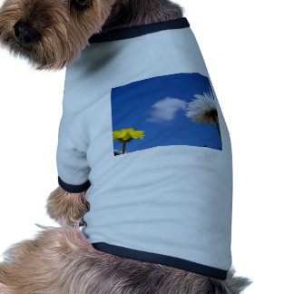 Spring time flowers dog clothing
