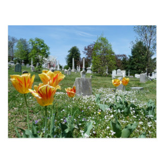 Spring time in Cave Hill Cemetery Postcard