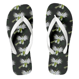 SPRING TIME IS HERE THONGS