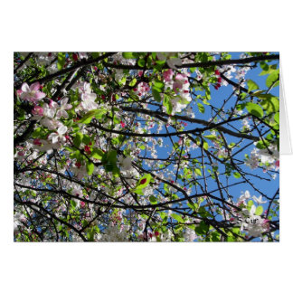 Spring Time, S Cyr Greeting Card