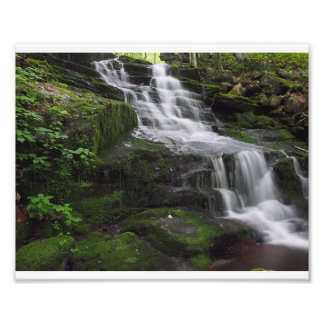 Spring Time Waterfall Photo Print