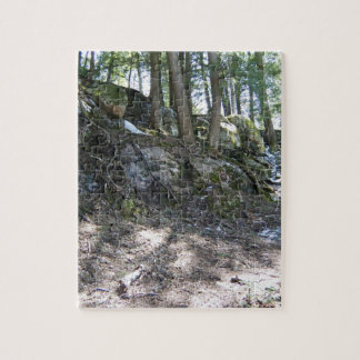 Spring Tree Roots on a Rocky Slope Jigsaw Puzzle