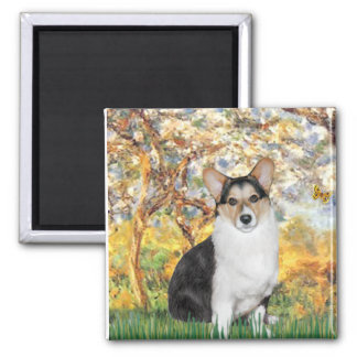 Spring - Tri Color Welsh Corgi 10 Magnet