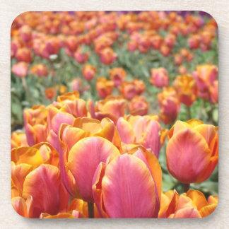 Spring Tulip Cork Coasters Pink Tulips Flowers