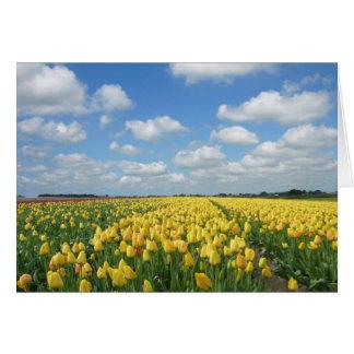 Spring Tulip Festival Landscape Greeting Card