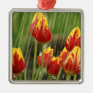 Spring Tulips Christmas Tree Ornament