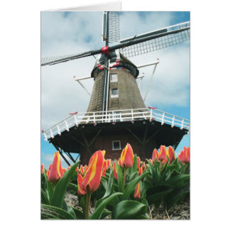 Spring Tulips Windmill Card