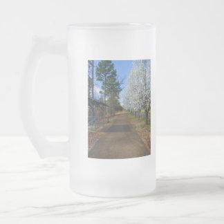 Spring Walk Frosted Glass Beer Mug