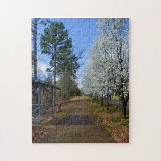 Spring Walk Jigsaw Puzzle