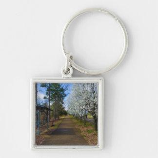 Spring Walk Key Ring