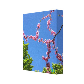 spring web stretched canvas print