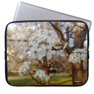 Spring White Blooms on Tree Sunset Computer Bag