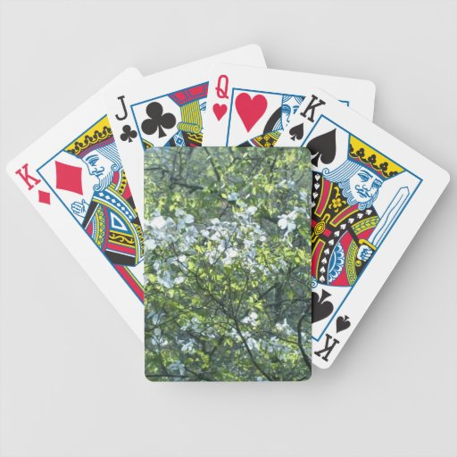spring white dogwood flowers bicycle card deck