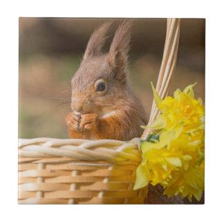Spring wildlife Red Squirrel Ceramic Tile