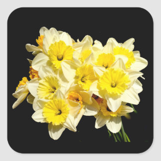 Spring Yellow Daffodil Stickers