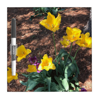Spring yellow tulip type flowers dry erase board