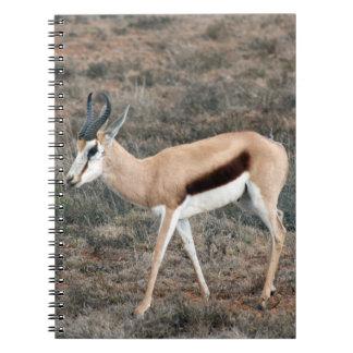 Springbok Spiral Notebook