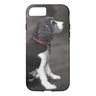 Springer Spaniel Phone Case