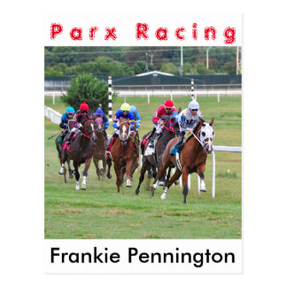 Springer's Point- Frankie Pennington Postcard
