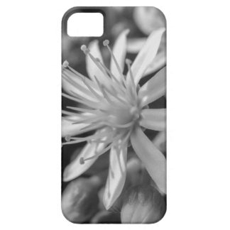 SpringFlower Barely There iPhone 5 Case