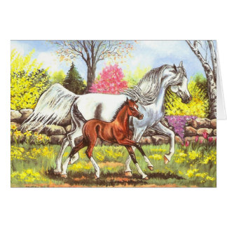Springtime, Arabian Mare and Foal Greeting Card