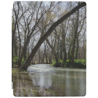 Springtime At Finley iPad Cover