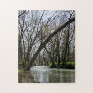 Springtime At Finley Jigsaw Puzzle