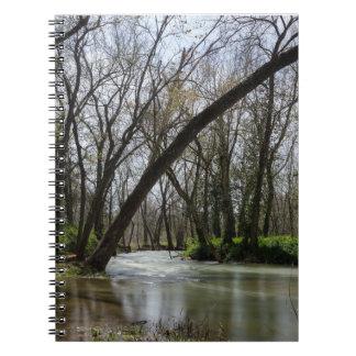 Springtime At Finley Notebook